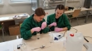 zajęcia laboratoryjne-6